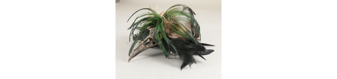 Raven Beak Fascinator Green